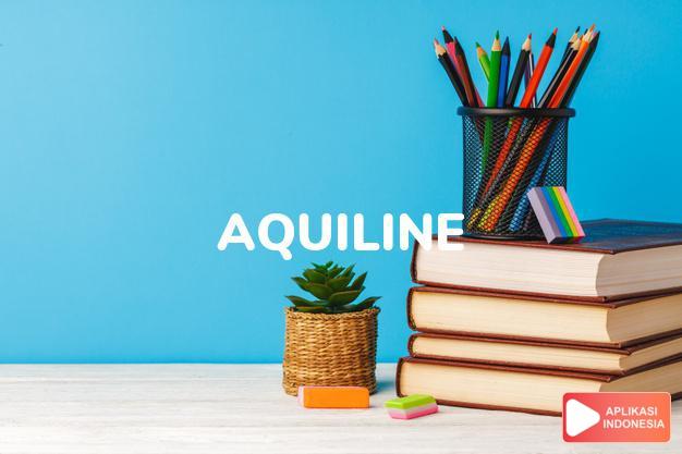 arti aquiline adalah ks.  seperti rajawali.  (of a nose) bengkok sepe dalam Terjemahan Kamus Bahasa Inggris Indonesia Indonesia Inggris by Aplikasi Indonesia