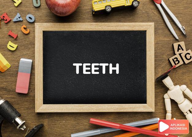 arti teeth adalah lih   TOOTH. dalam Terjemahan Kamus Bahasa Inggris Indonesia Indonesia Inggris by Aplikasi Indonesia