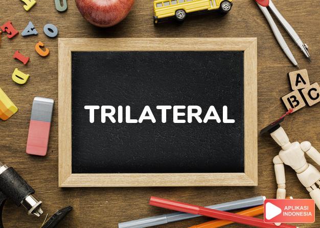 arti trilateral adalah ks. segitiga, trilateral (of an agreement, geometr dalam Terjemahan Kamus Bahasa Inggris Indonesia Indonesia Inggris by Aplikasi Indonesia